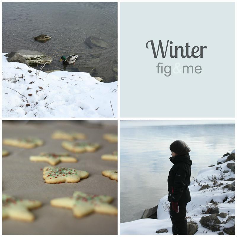 A nice winter