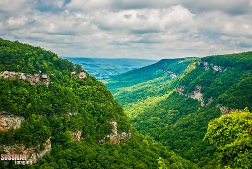 trees sky mountains nature clouds georgia lookoutmountain cloudlandcanyon dadecounty thesussman sonyalphadslra200 sussmanimaging
