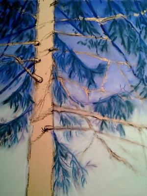 20121231_step4_pine