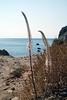 Kreta 2007-2 438