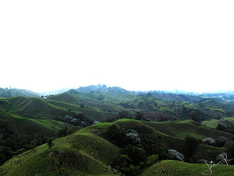 Imagen del Paisaje alrededor de Filandia, Quindio