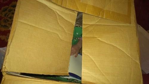 Q6 in box