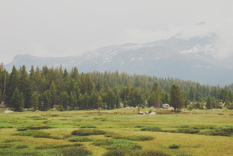 California 09