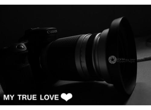 my true love  by Aries Parcum