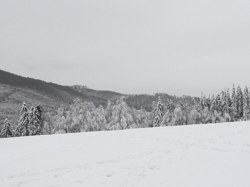 une journee a la neige aux donon 050