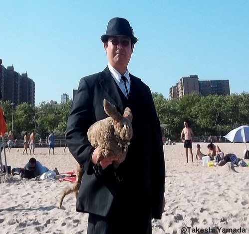 Seara (sea rabbit) and Dr. Takeshi Yamada at Coney Island Beach in Brooklyn, New York on July 22, 2012.  20120722 022==top