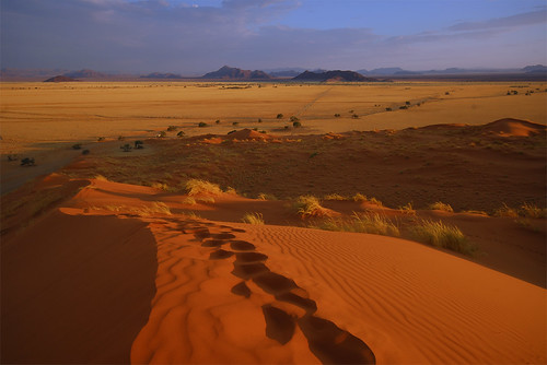 africa mountains sand desert horizon footprints hills grasses ripples savannah sesriem namibia shrubs scrub sanddunes southernafrica southwestafrica hardap