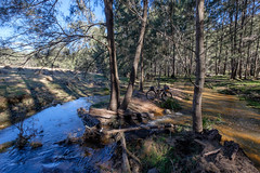 Cycling the Six Foot Track - Murdering Creek @ Cox's River