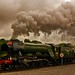 The flying scotsman by WISEBUYS21
