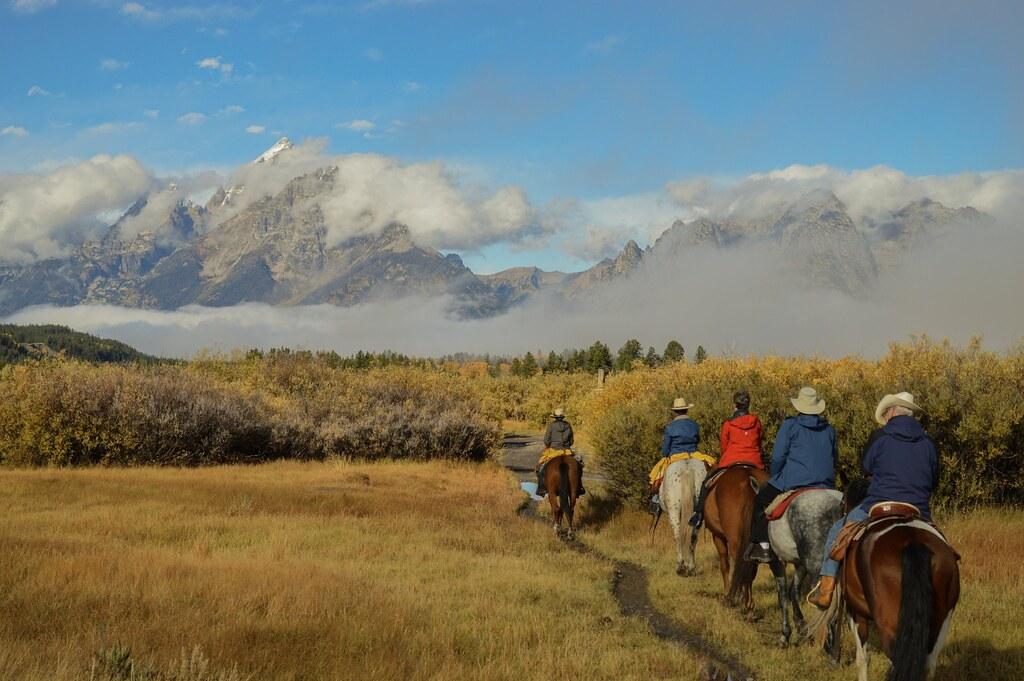 Horses riding towards grand Teton national park