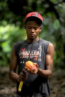 Dominican Republic: Cacao worker.2014.Solidarity Center&Ricardo Rojas