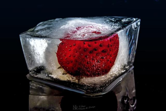 Ice Berry (part2)