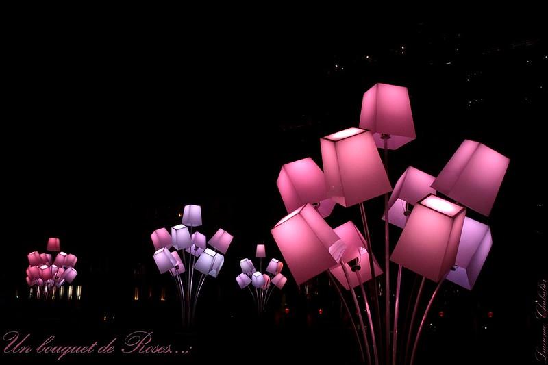 Un bouquet de roses... 8266773898_d1be6b5e1d_c