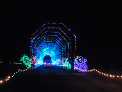 Hillsborough County Light Spectacular