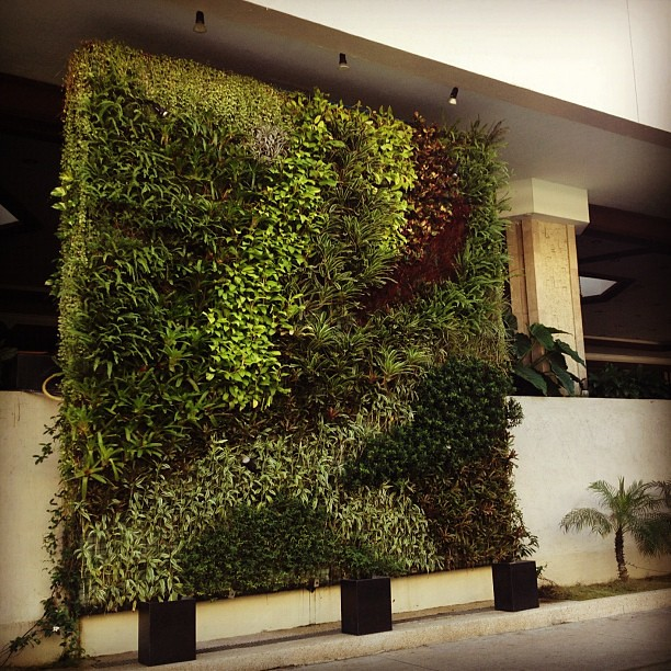Dusit Hotel does the vertical garden so well! #makati