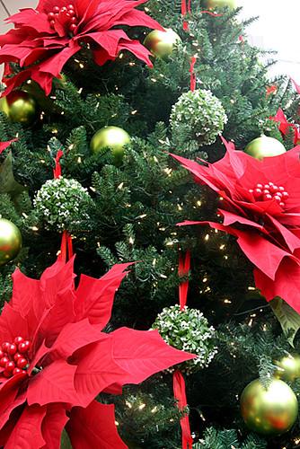 Poinsetta-Christmas-Tree