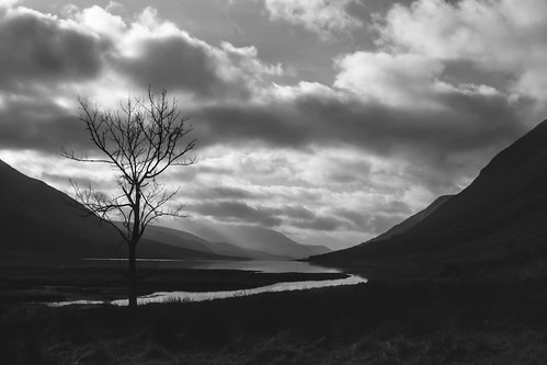 The Lonely Tree - Glen Etive by xxx zos xxx