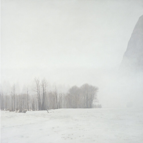 Pamela Kendall Schiffer, Yosemite Valley, December, 2012