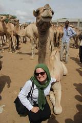 Camel Market (5)