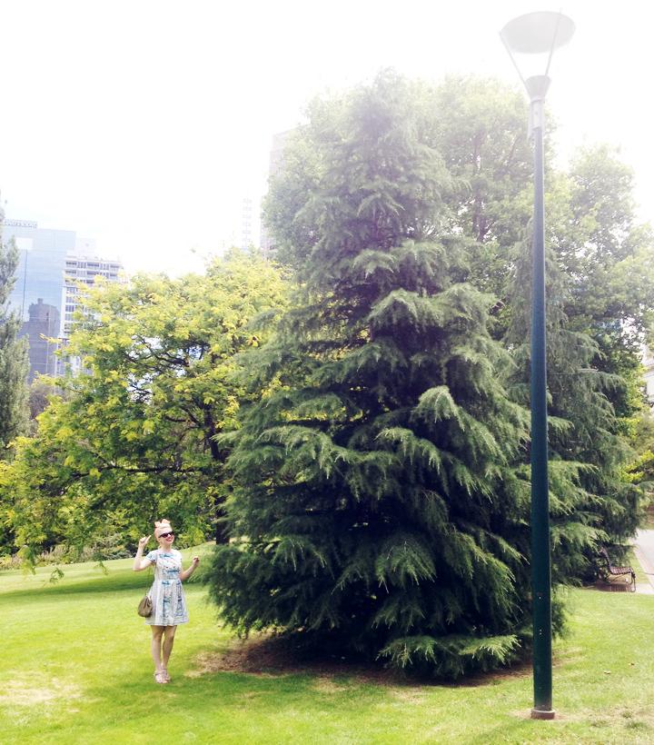 city park b