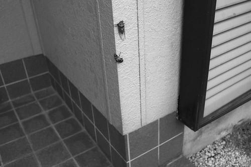 JZ C7 25 002 福岡市東区 M9+ST50 2.5#
