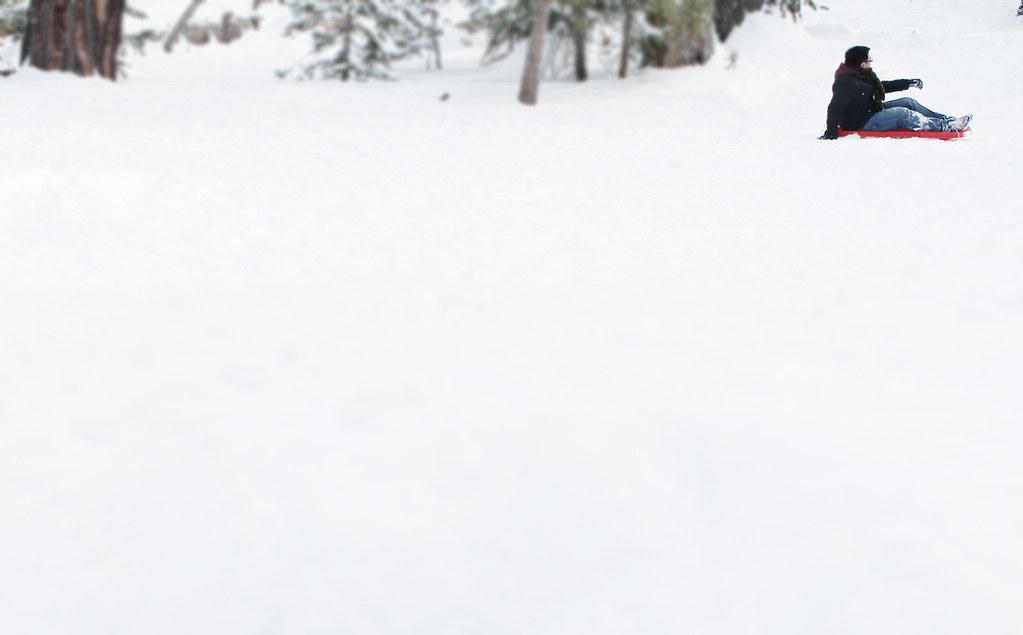 alex sledding 2