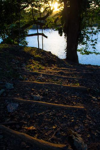 sunset rio canon river atardecer woods bosque santodomingo puestasol 60d engombe