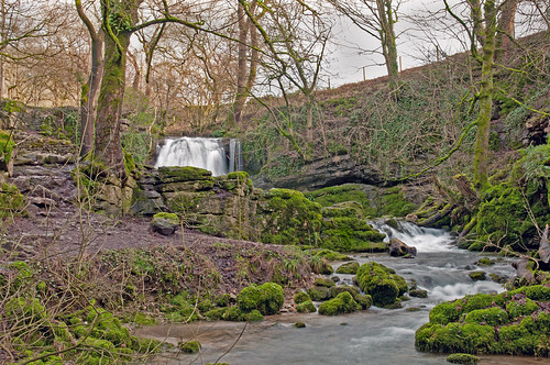 Janet's Foss by Andy Pritchard - Barrowford