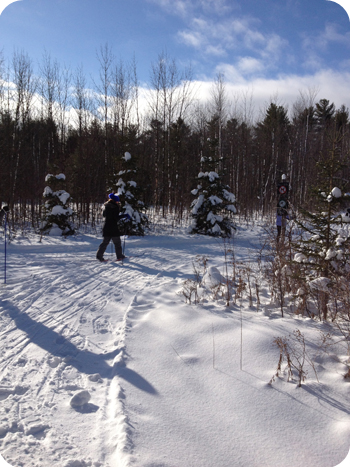 XC skiing at Green's Creek, Ottawa