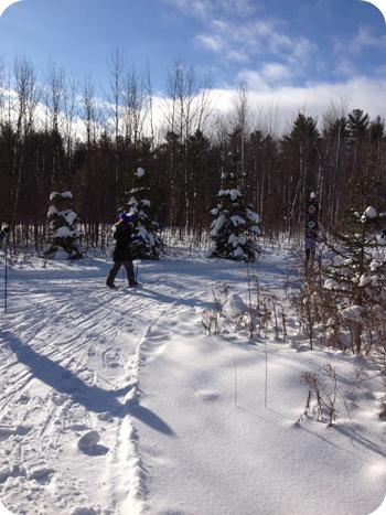 XC skiing at Green's Creek, Ottawa