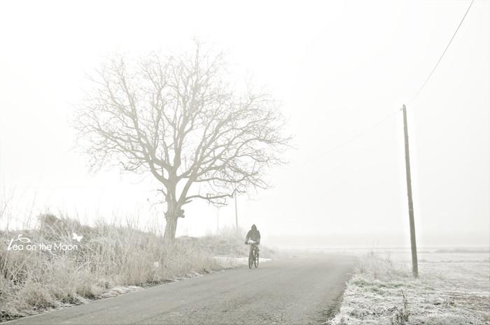 pedaleando la niebla