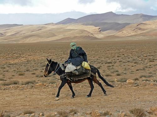Hombre en mula (Atlas Medio, Marruecos)