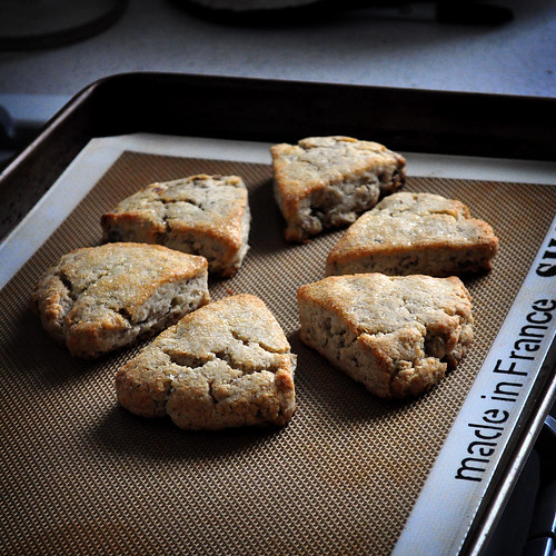 Gluten-Free Butternut Pecan Scones Recipe — Dishmaps