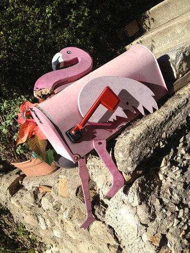 Beheaded flamingo