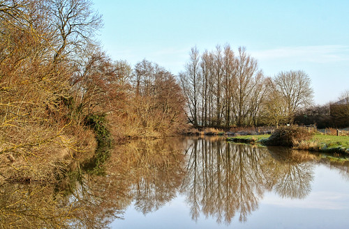 trees winter reflections river ouse eastsussex barcombemills larigan phamilton