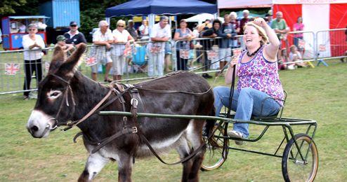 The Donkey Derby