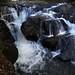 Beltzville State Park 04
