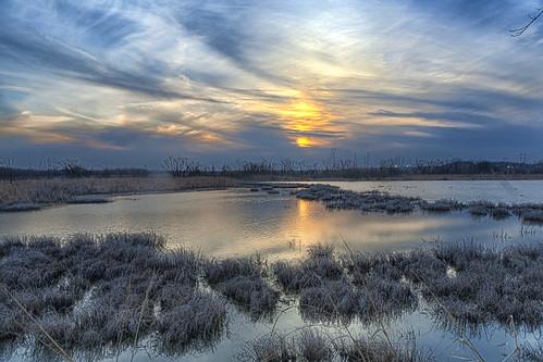 sunset reeds lawrencekansas douglascounty patricknancydrive