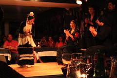 Flamenco 2