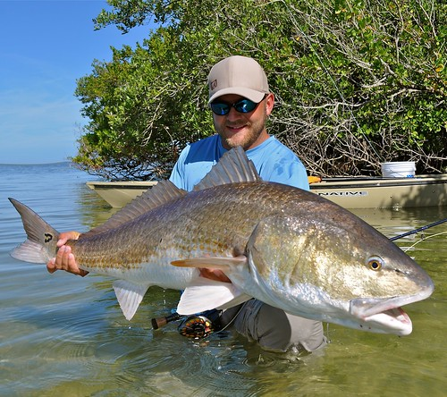 Chris Lewis Redfish
