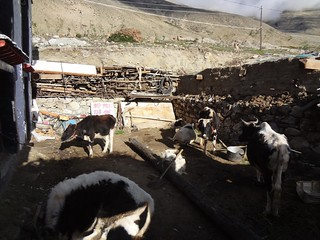 Aldeia tibetana