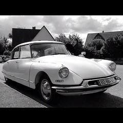 automobile, vehicle, automotive design, classic car, land vehicle, citroã«n ds,