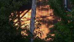 Moncton Sunrise on Build