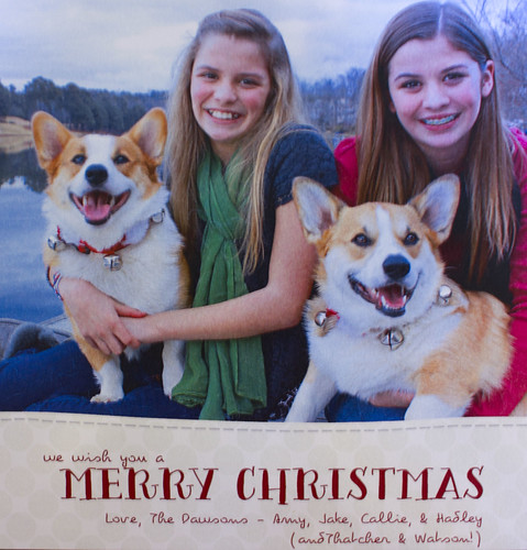 Christmas card 2012_edited-1