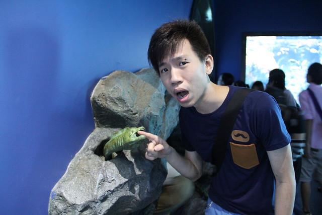 RWS S.E.A Aquarium 666