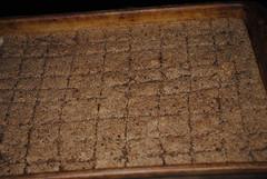 cinnamon almond cereal