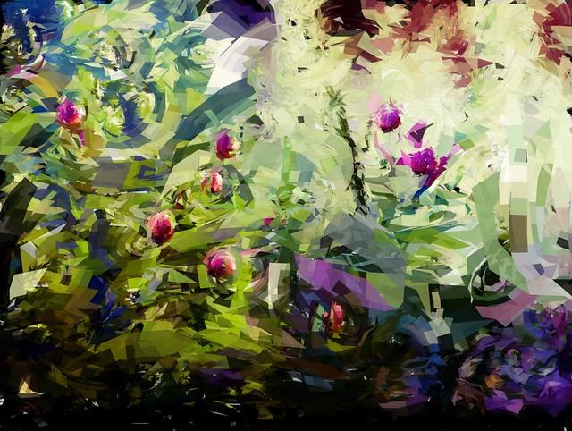 garden.01