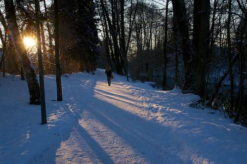 schnee trees winter sun snow girl germany bavaria december sonne pfaffenhofenilm