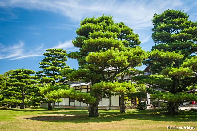 Parque Ritsurin-9