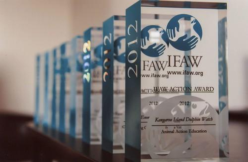 IFAW awards